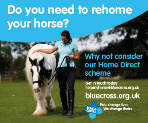 Blue Cross 2020 A (West Midlands Horse)