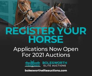 Bolesworth Elite Acutions (West Midlands Horse)