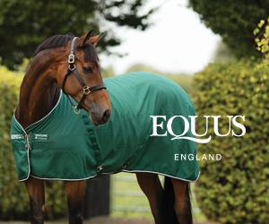 Equus (West Midlands Horse)
