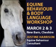 Justine Harrison Workshop March 2019 (West Midlands Horse)